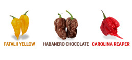 Frutti Fatalii, Habanero e Carolina Reaper